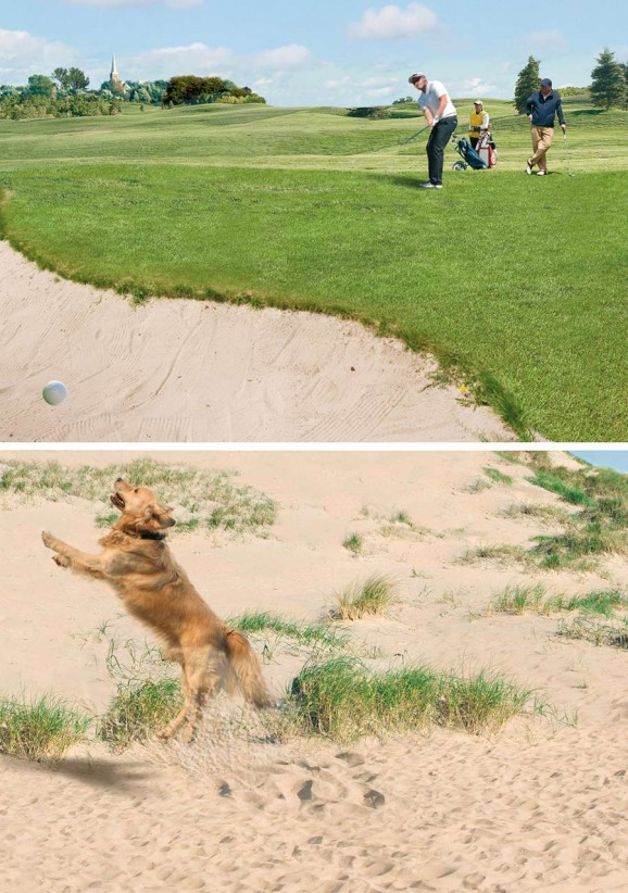 Westzoom Golf Hond