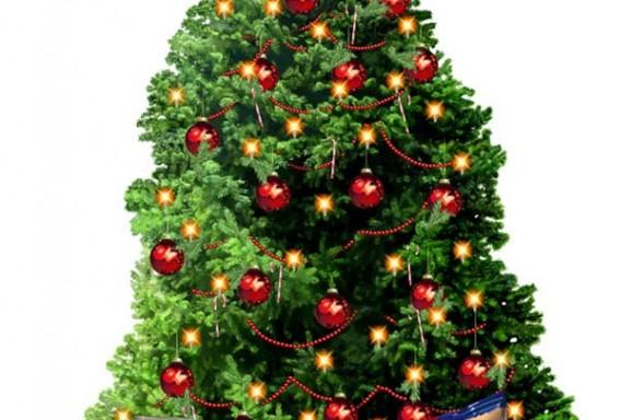 Lays Kerstboom